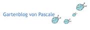 Gartenblog von Pascale